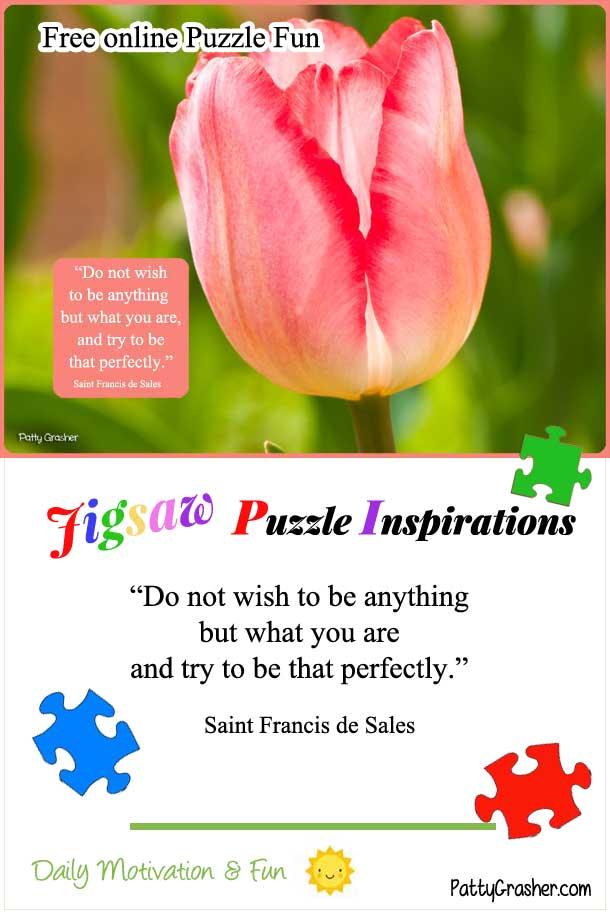 Catholic Puzzle 1