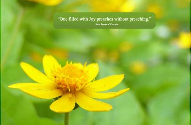 """Catholic quote: """"""""One filled with JOY preaches without preaching."""" Saint Teresa of Calcutta"""